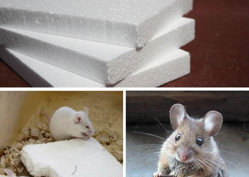мышка в пенопласте