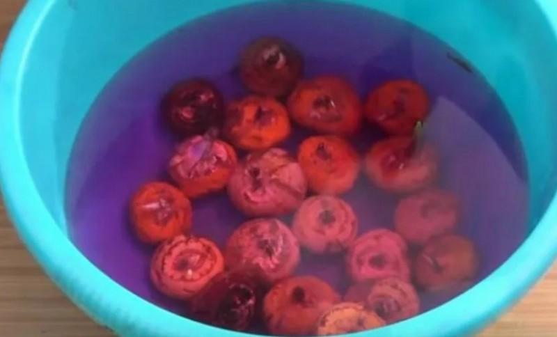 вымачиваем луковичные в марганцовке